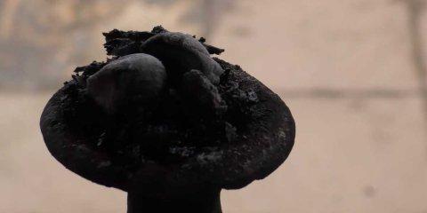 nargile-kömürü-özellikleri